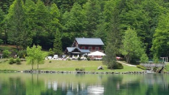Le Bout du Lac : 20170601_150541_large.jpg