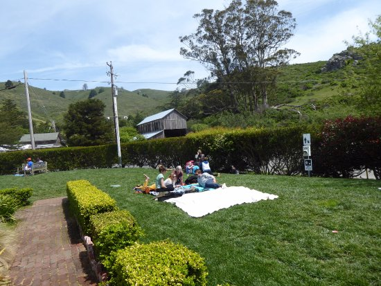 Muir Beach, Califórnia: Hanging out on the Lawn