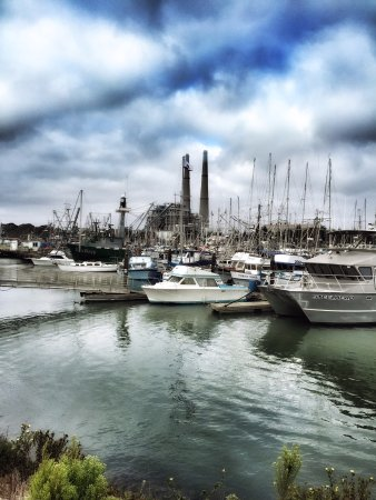 Moss Landing, CA: Photo of the habor
