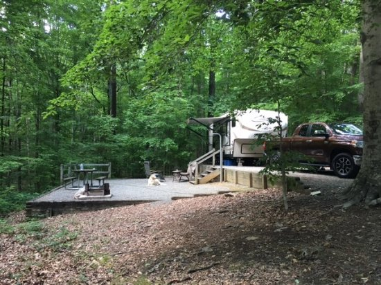 Occoneechee State Park: Beautiful camping areas....some quite large!