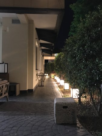 Beautiful outside area at night time, all we could smell was