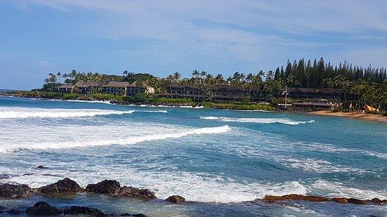 Napili Beach : 20170202_105210_large.jpg