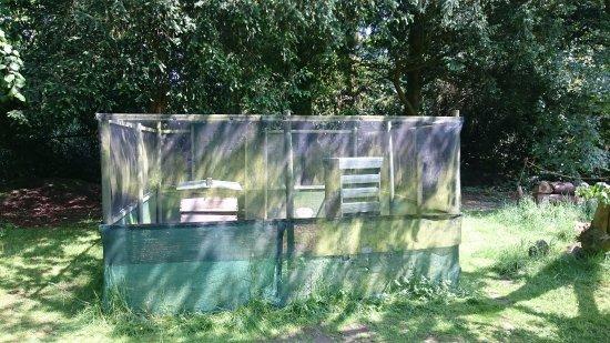 Macclesfield, UK: Bee hives