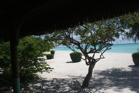 Quirimbas Archipelago-bild