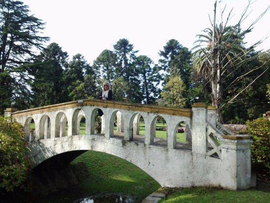Estancia La Candelaria: Puente sobre arroyo