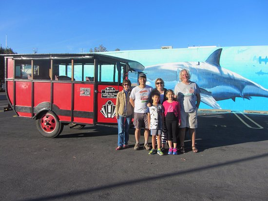 Hooters Vintage and Classic Vehicle Hire Ltd: Monte the Vintage Bus showing our guests around Napier