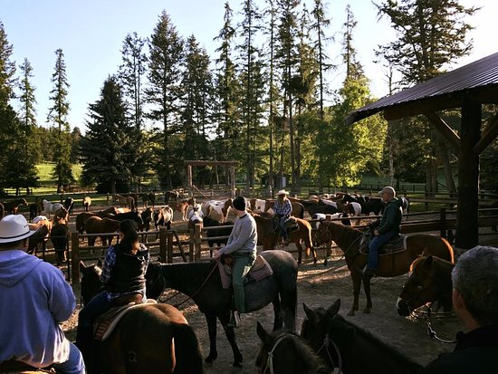 Averill's Flathead Lake Lodge: Every guest can find their perfect horse