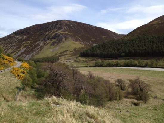 Highland Wildlife & Birdwatch Safaris: Findhorn Glen, an idyllic spot for lunch