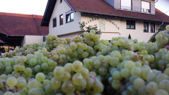 Weingut und Edelbrennerei Gemmrich