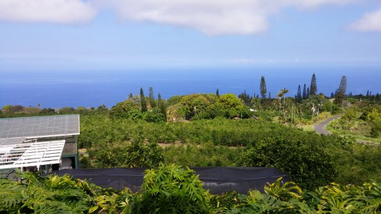 Holualoa, Hawái: Spectacular View