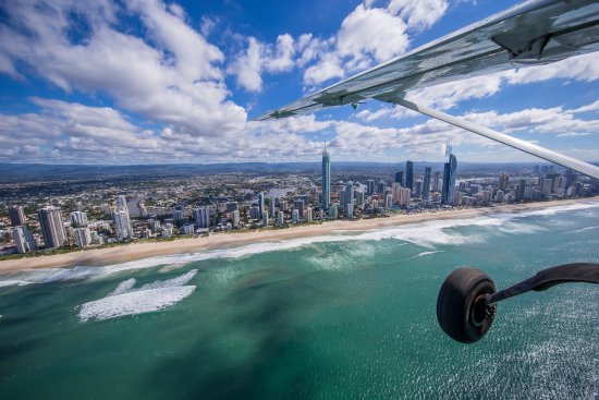Lady Elliot Island Day Tour: Scenic Flight from the Gold Coast