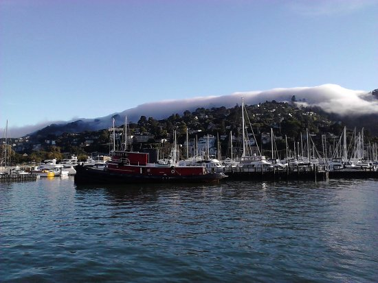 Sausalito As The Fog Rolled In Picture Of Red And White