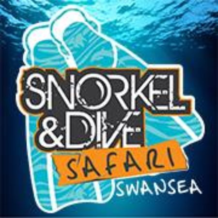 Snorkel & Dive Safari Swansea