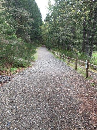 Dupont, วอชิงตัน: Sequalitchew Creek Trail Head