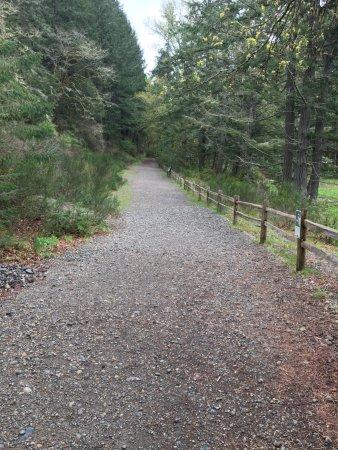 Dupont, WA: Sequalitchew Creek Trail Head
