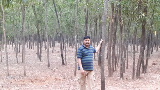 Myself at Orgram Forest of Barddhaman District