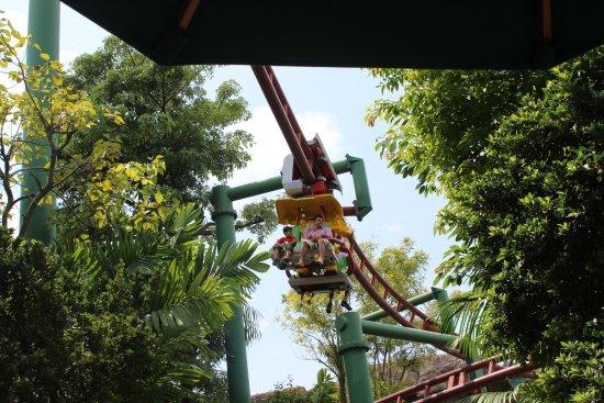 Universal Studios Singapore Canopy-Flyer & Canopy-Flyer - Picture of Universal Studios Singapore Sentosa ...