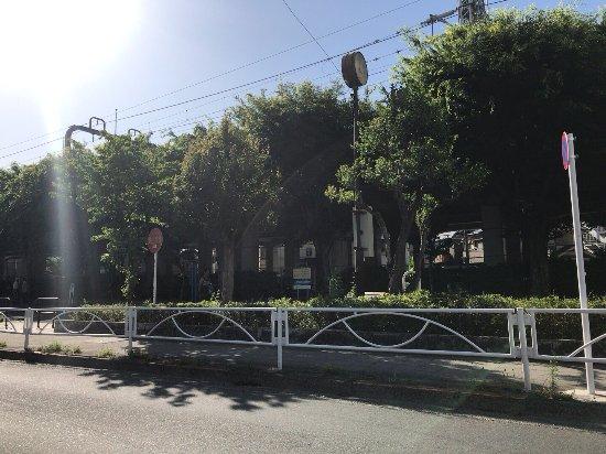 Yamano Park
