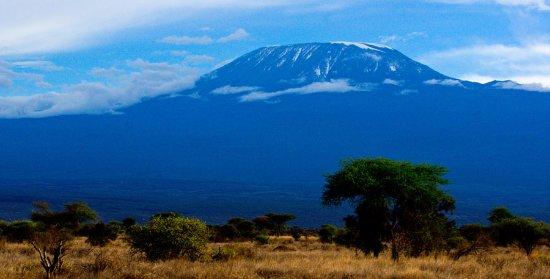 Skylax Safaris