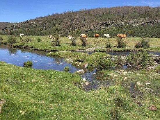 Cantalojas, Spain: photo1.jpg