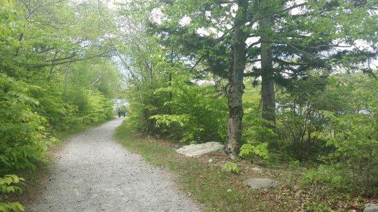 Tobyhanna, PA: Trail around lake