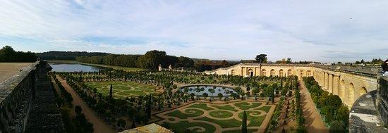le jardin de versailles the topiary below the entrance - Jardin Chateau De Versailles