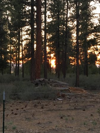 La Pine, OR: photo0.jpg