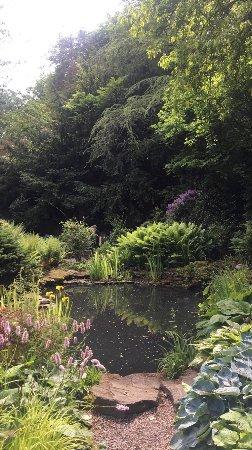 Rotherham, UK: photo2.jpg