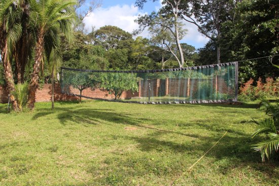 Pakachere Backpackers: Volleybal field in our big garden