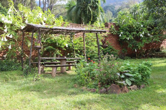 Pakachere Backpackers: Picnic table in our big garden