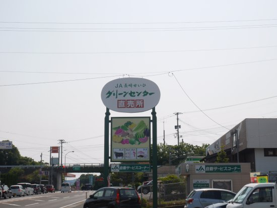 Nagasaki Seihi Green Center