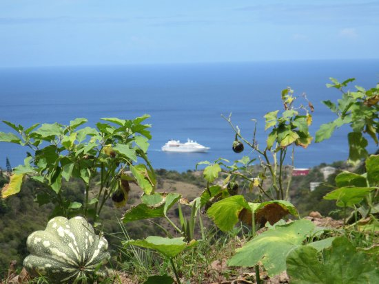 Montserrat: View from high on island to our means or travel there