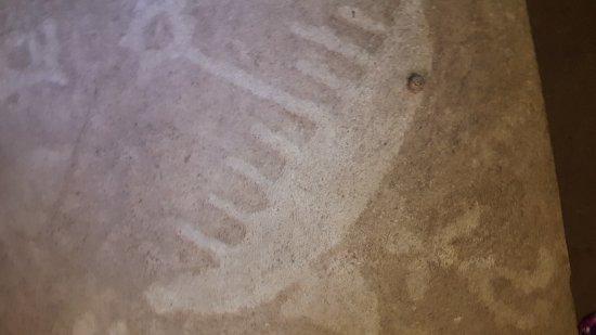 Petroglyphs Provincial Park: 20170524_114527_large.jpg