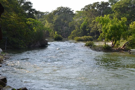 Mahogany Hall Boutique Resort: Mopan River , warm water, shallow even non swimmers and enjoy