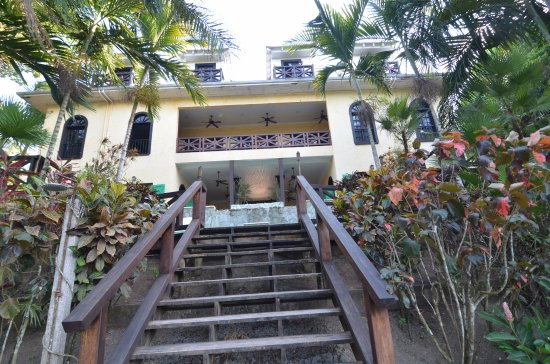 Mahogany Hall Boutique Resort: Back yard stairs to river