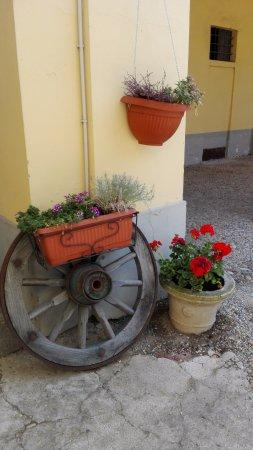 Casalino, İtalya: un po' di colore