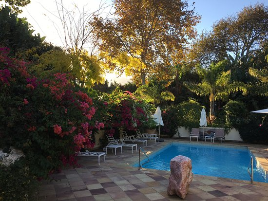 The Last Word Constantia: Beautiful pool in the garden area, so peaceful