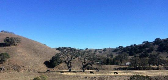 Santa Ynez, Kalifornien: The hills just north of town
