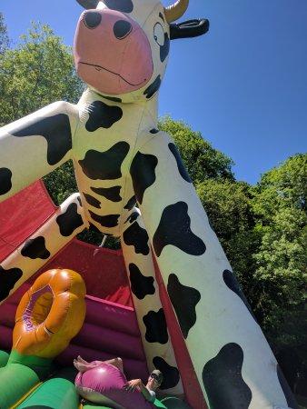 Camping du Traspy: La structure glonflable vache qui plaît même au plus vieux (le gros bébé sur la photo à 31 ans)