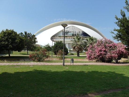 Valencia Institute Of Modern Art Overlooks The Turia Gardens
