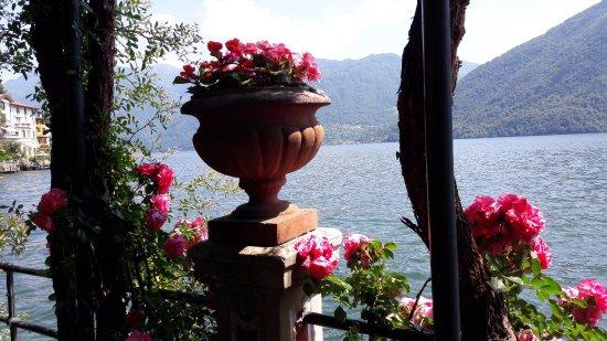 San Mamete Valsolda, Itália: Uitzicht vanaf terras op meer van Lugano
