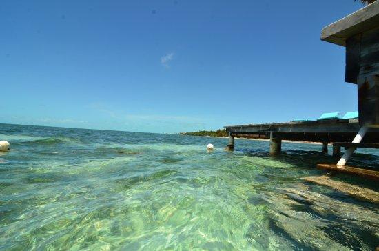 Pelican Reef Villas Resort: Pier