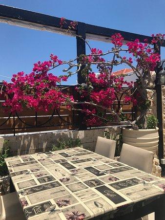 Très chouette lunch sur belle terrasse