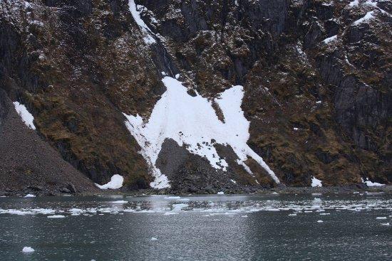 Holgate Glacier Foto
