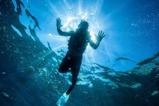 Cabo Pulmo, Mexico: Snorkelea en este paraíso...