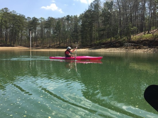 Cartersville, GA: We enjoyed a day on the lake. The water was beautiful and we pulled up to shore a couple of time