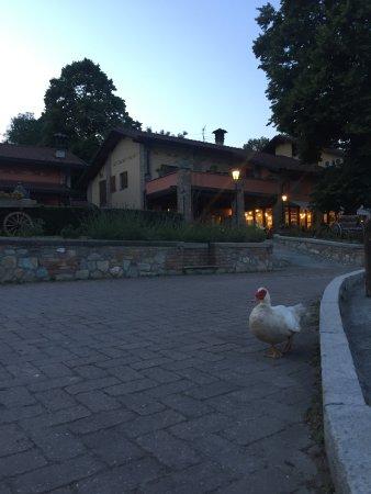 Monguzzo, Italie : Sera magica all agriturismo