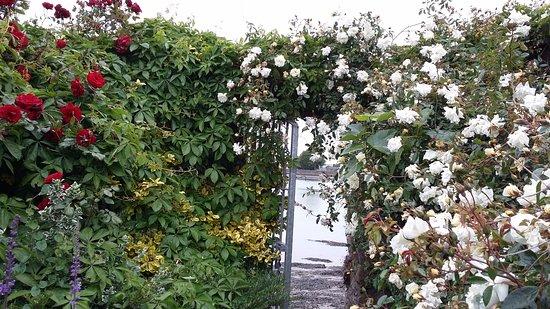 Дангарван, Ирландия: View of lovely gardens, through gate of river