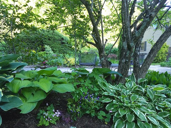 Old Fort, Carolina del Nord: Plenty of shady spots to relax outside at the Inn on Mill Creek