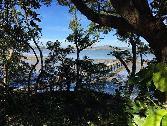梭魚度假村照片